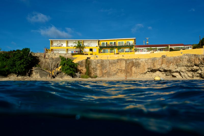 Home All West Apartments Amp Diving Curacao All West Eng