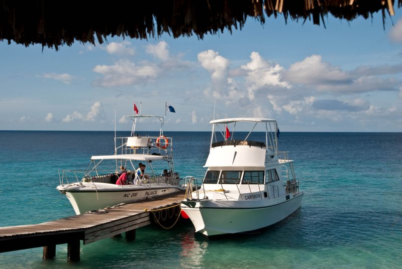 Go West Diving All West Apartments Amp Diving Curacao All West Eng